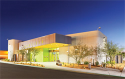 Ocotillo-Library