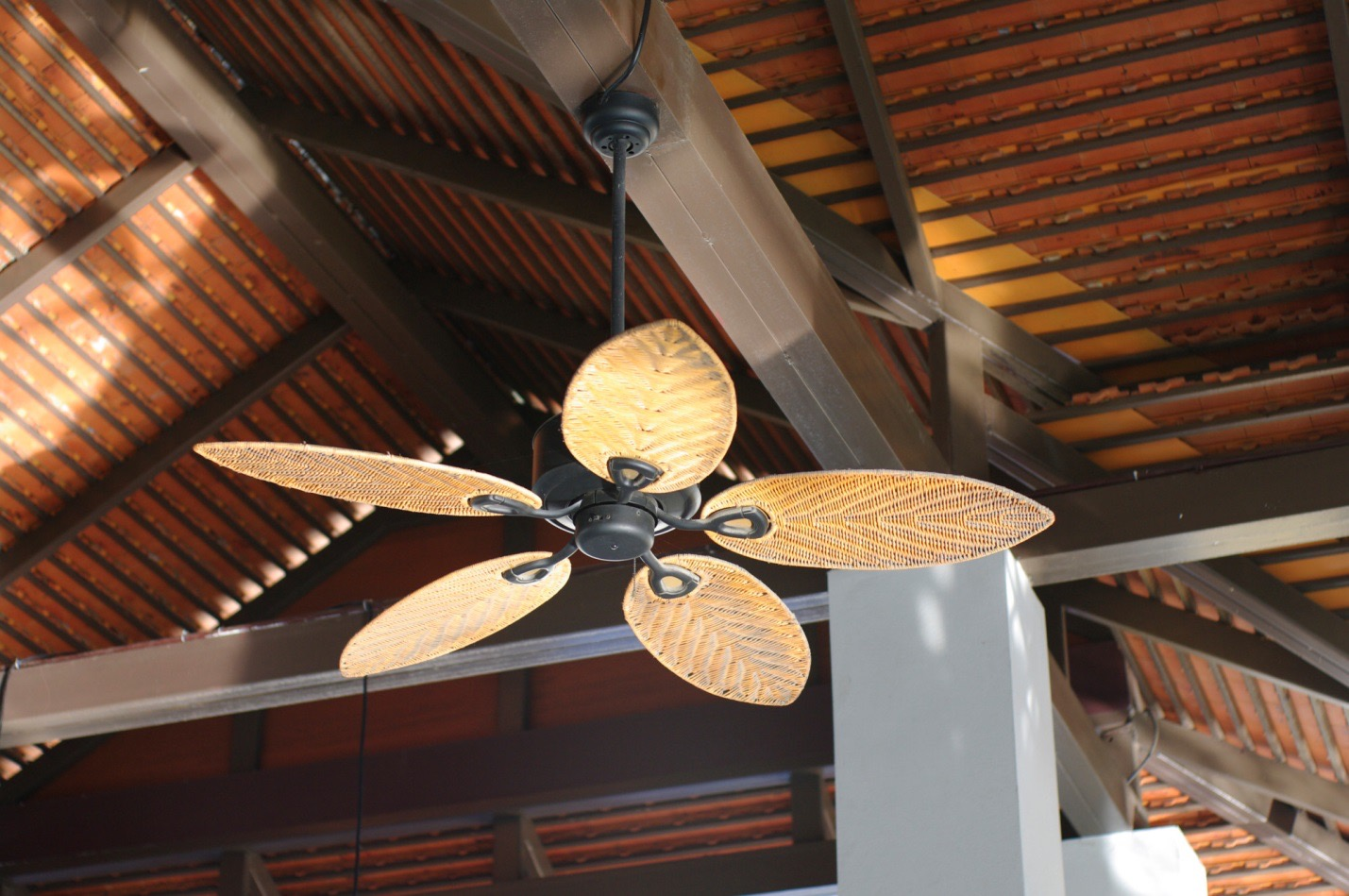 Outdoor Ceiling Fans Benefits And Things You Need To Know Az Big Media